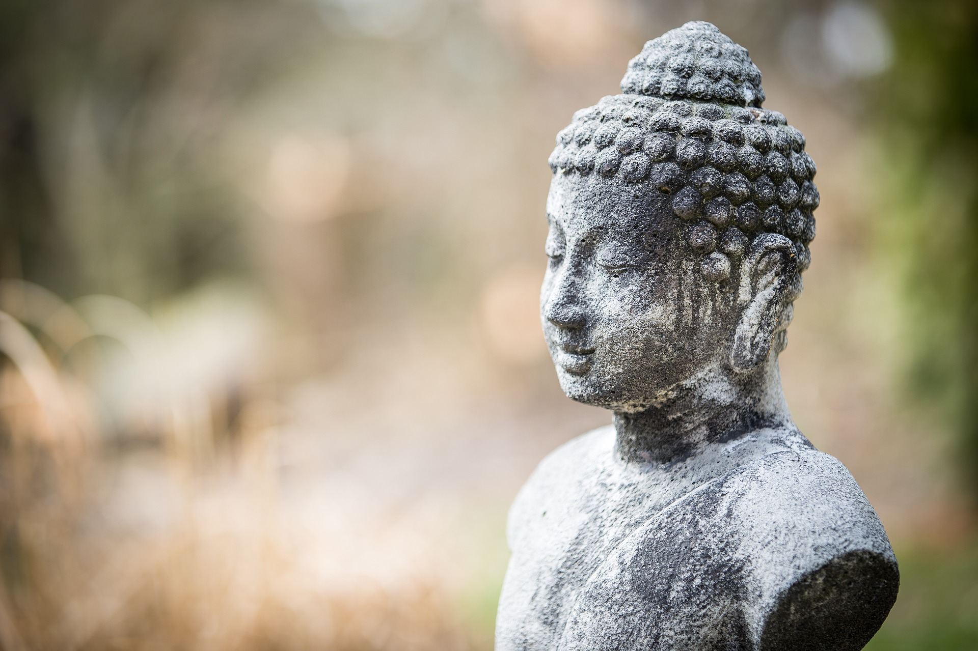 Mindfulness Meditation Workshop (Aug/Sept)